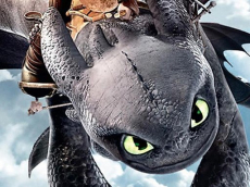 How To Train Your Dragon Jigsaw Puzzle Collection