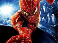 Spider Man Warrior